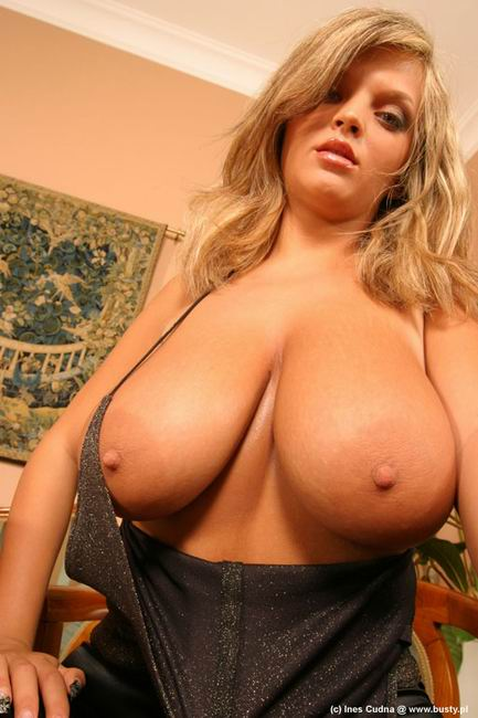 huge tits busty ines cudna